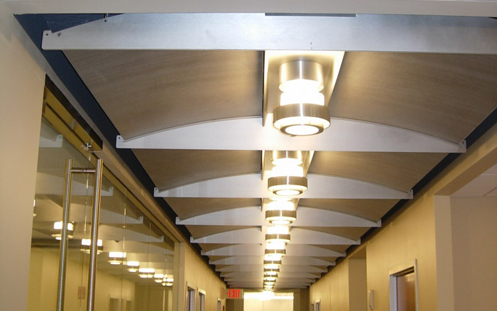 Decorative Aluminum Ceiling